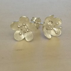 Buttercup earrings 9ct gold.